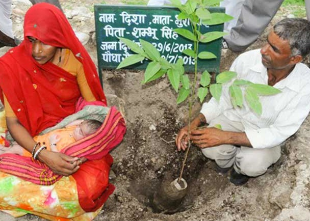 Unique Piplantri Village Plants 111 Trees For Every Girl Child